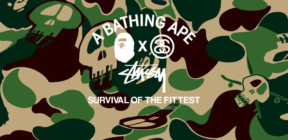 Stussy x bape survival of the fittest stussy