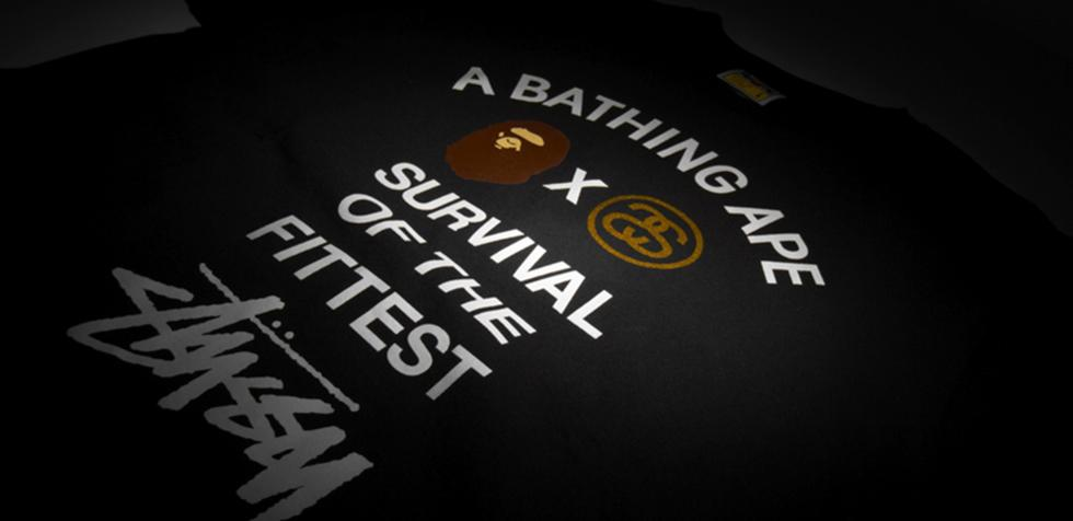 Stussy and A Bathing Ape Survival Of The Fittest